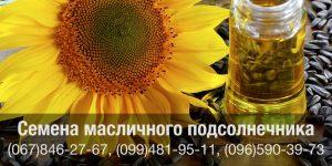 Купить семена подсолнечника масличных сортов