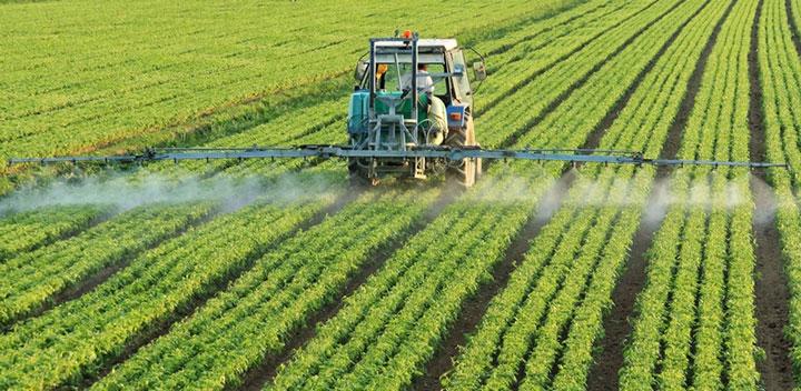 Запрет глифосата несет угрозу для экспорта украинского зерна в ЕС
