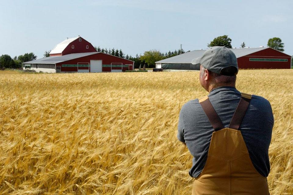 Правительство упростило механизм получения госпомощи фермерам и сельхозкооперативам 28.09.2018 г