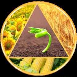 Импортные элитные семена