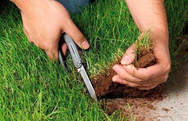 Сроки оформления земли планируют уменьшить