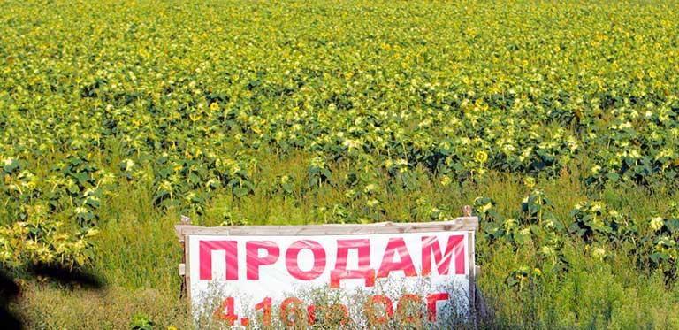 Висунуто ряд умов для запуску ринку землі в Україні