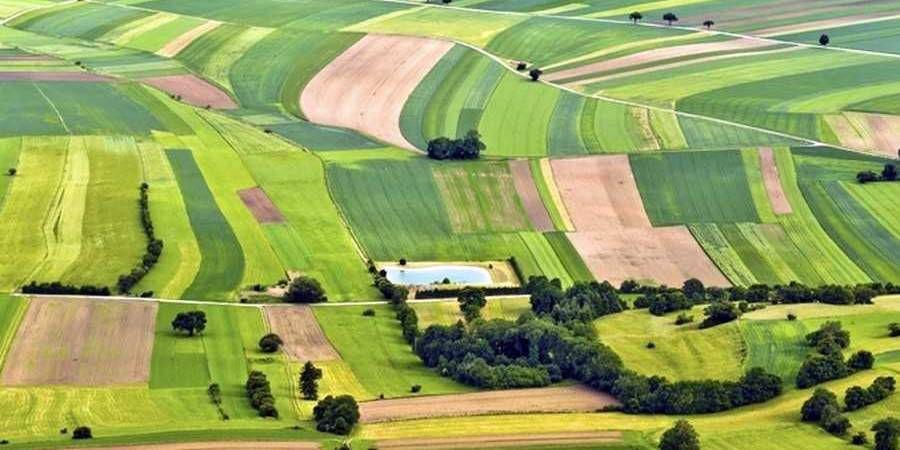 Как можно получить бесплатно земельный участок в Украине
